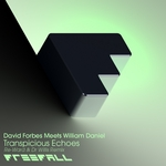 FORBES, David /WILLIAM DANIEL - Transpicuous Echoes (Re-Ward & Dr Willis remix) (Front Cover)