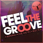 VARIOUS - Feel The Groove Volume 1 (A Blistering House & Tech Selection) (Front Cover)