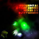 Artist Series Vol 4 (mixed by DJ Synchro) (unmixed tracks)