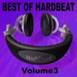 VARIOUS - Nukleuz: Best Of Hard Beat Vol 3 (Front Cover)