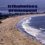 VARIOUS - Tribalmixes Promopool (Front Cover)
