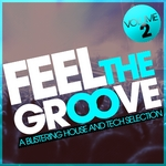 VARIOUS - Feel The Groove (A Blistering House & Tech Selection Vol 2) (Front Cover)