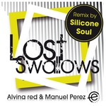 RED, Alvina/MANUEL PEREZ - Lost Swallows EP (Front Cover)