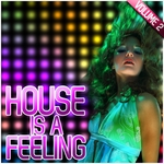 VARIOUS - House Is A Feeling Vol 2 (Front Cover)