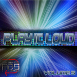 VARIOUS - Play It Loud Vol 5 (Front Cover)