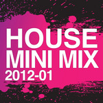 VARIOUS - House Mini Mix 2012 01 (Front Cover)