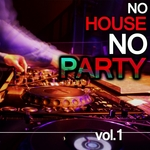 VARIOUS - No House No Party Vol 1 (Front Cover)