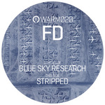 FD - Blue Sky Research (Front Cover)
