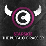 STARSKIE - The Buffalo Grass EP (Front Cover)