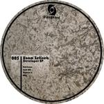 UNAM ZETINEB - Developer EP (Front Cover)