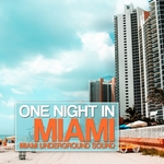 VARIOUS - One Night In Miami (Miami Underground Sound) (Front Cover)