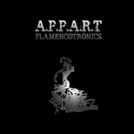 APPART - Flamencotronics 20 (Front Cover)