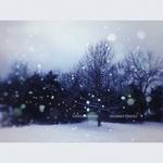 VDOVIN, Stanislav - December (remixes) (Front Cover)