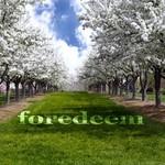 FUNKOCRAT - Foredeem (Deeper Breaks mix) (Front Cover)