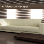 VARIOUS - Ambient Soundscapes (Front Cover)