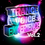 VARIOUS - Trance Voice Experience Vol 2 (The Very Best In Vocal & Additional Bonus Instrumental Club Anthems) (Front Cover)