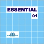 VARIOUS - Essential 01 (Front Cover)