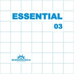 VARIOUS - Essential 03 (Front Cover)