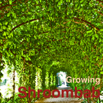 SHROOMBAB - Growing (Front Cover)