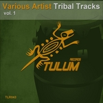 VARIOUS - Tribal Tracks Vol 1 (Front Cover)