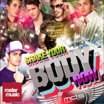 MDS feat MR ROMMEL - Shake Your Body Now (Front Cover)