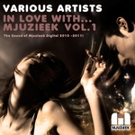 VARIOUS - In Love With Mjuzieek Vol 1 (Front Cover)