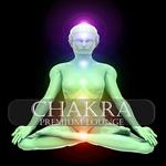 Chakra Premium Lounge (Meditation & Ayurveda Chill Out)