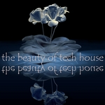 VARIOUS - The Beauty Of Tech House (Gorgeous Techno & Minimal House Diamonds) (Front Cover)