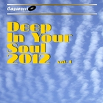 VARIOUS - Deep In Your Soul 2012 Vol 1 (Front Cover)