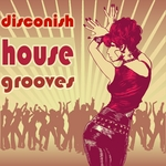 VARIOUS - Disconish House Grooves (Ultimate Dancing Disco House Clubbers) (Front Cover)