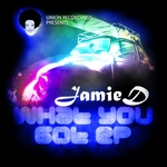 JAMIE D - What You Got EP (Front Cover)