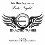DEE JAY, Iris feat ERIN - Into Night (Front Cover)