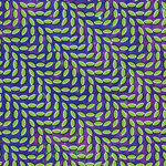 ANIMAL COLLECTIVE - Merriweather Post Pavilion (Front Cover)