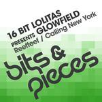 16 BIT LOLITAS presents GLOWFIELD - Reefteef (Front Cover)