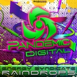 ENERGY SYNDICATE - Raindrops (Front Cover)