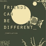 VARIOUS - Friends Can Be Different (Front Cover)