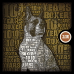 VARIOUS - 10 Years Of Boxer (Front Cover)