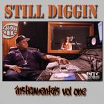Still Diggin: Volume 1
