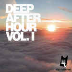 VARIOUS - Deep After Hour Vol 1 (Front Cover)
