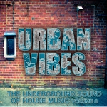 VARIOUS - Urban Vibes (The Underground Sound Of House Music Vol 8) (Front Cover)