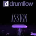 DRUMFLOW - Assign (Front Cover)
