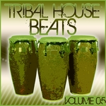 Tribal House Beats Vol 5
