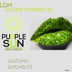 LDM - Autumn Moments EP (Front Cover)