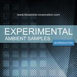 Experimental Ambient Samples (Sample Pack WAV)