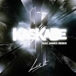 KASKADE/SKRILLEX - Lick It (Kaz James remix) (Front Cover)