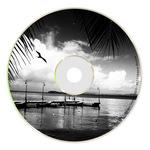 OMFG ZOMBIES - Wandering Albatross EP (Front Cover)