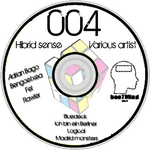 ADRIAN BAGO/FEL/BENGOETXEA/RAWLER - Hibrid sense (Front Cover)