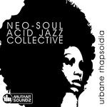NEO SOUL ACID JAZZ COLLECTIVE - Urbane Rhapsoidia (Front Cover)