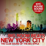 VARIOUS - Big Room Beats In New York City Vol 2 (Front Cover)