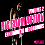 VARIOUS - Big Room Action Volume 2 (Front Cover)